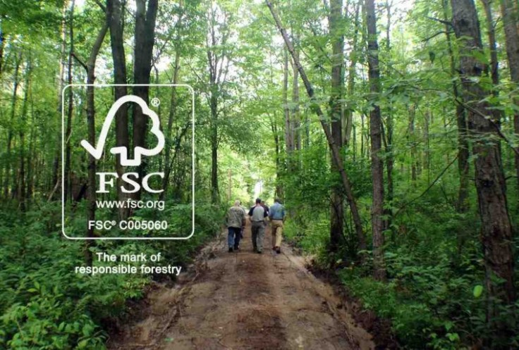fsc-forest-760x514